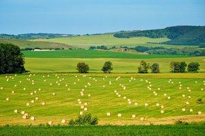 Tájékoztatás a zöldítés feltételrendszeréről